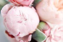 KVETINOVO / Kvetinové vzory evokujú radosť a sviežosť. Potešte sa s nami pohľadom do zakvitnutých domácností či outfitov :)
