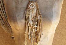 feathers bones & shells art