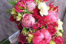 Bouquets / by Elisabetta Pozzetti