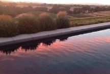 The Ranch / Burbank Ranch Vineyard in Templeton CA