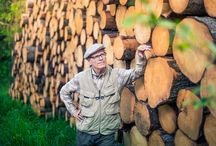 Puukauppa ja kannattavuus