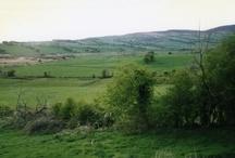 Drimadoon, County Mayo, Ireland / near the town of Balla