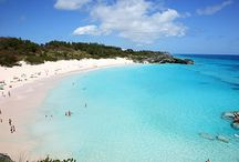 Basking in Bermuda / King's Wharf has something for everyone. Sample typical island food and stroll through the shops and museums of the Royal Naval Dockyard, an impressive military fortress built in 1815. Sail the clear waters of Hamilton Sound. Find quaint gems at the Bermuda Arts Center and Craft Market. Or have a close encounter with dolphins at Dolphin Quest, where you can swim, dance and kiss these magnificent sea creatures.