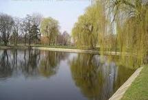 Zduńska Wola - my city :)