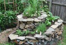 Idei de grădina