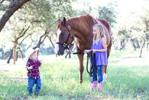 Equestrian Blogs