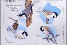 Lintumaalauksia