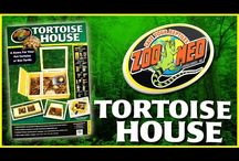 Starter Kits and Enclosures / New to reptile or amphibian keeping? Get started with a Zoo Med Starter Kit or Enclosure! / by Zoo Med Laboratories