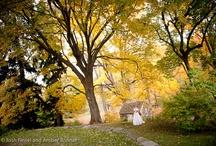 Beautiful wedding venues near Philadelphia