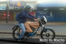 motos de macho