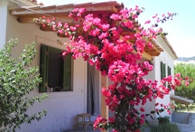 Home sweet home / My country in pictures... Greece