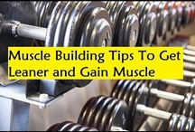 Muscle Building Tips To Get Leaner and Gain Muscle