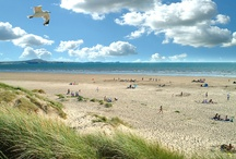 West Wales beaches / Our favourite spots for paddling in the shallows, building sandcastles and walking the dog