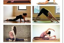 Workouts & Stretches