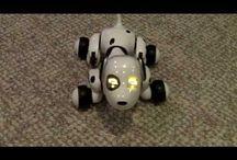 Robot pets / Robotic companions
