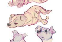 Animazione e sketch