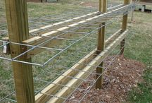 Berry growing frames
