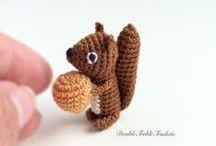 agurimi ecureuil