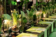 DINING TO SEE YOU / ALFRESCO DINNER PARTY / by V Woodworth-Petrick