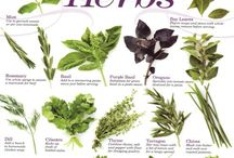 Herbs that Heal / Healthy herbs with health promoting properties