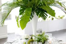 Wedding tropical