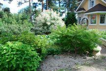My garden work/ Работы в саду / Photos of my completed landscape design. Фотографии мои готовых ландшафтных работ.