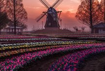 Holland Travel Inspiration