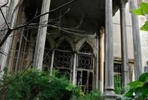Decay / Decrepit, abandoned, dying, forgotten, death, dying. It's all part of the cycle of life.