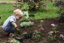 Gardening With Children / A board dedicated to teaching our future how to grow what they love.