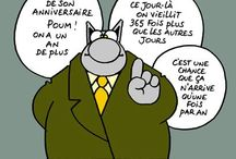 Humour chat Geluck