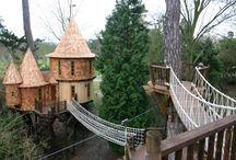 tree houses!!!! / by Alesia Mann