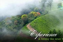 Kerala Tour Packages / Find the perfect holiday destinations in Kerala and enjoy some relaxing time off from your daily routine, Tour Packages in Kerala, Family Holiday Packages seasonzindia.