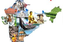 India / I'm India addicted and I love every aspect of the culture of this big county!