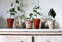 Home details / by Veronika Granqvist