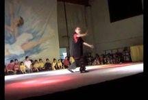 Hung Gar Kung Fu / Italian Family's Hung Gar Kung Fu Association - www.italianhunggar.com