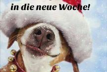 lustige weihnachts bilder