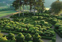 Desert Garden Inspiration / Las Cascadas