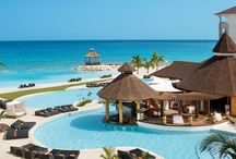 Jamaica Hotels for Weddings and Honeymoons / Please see our top reviewed hotels for Jamaica
