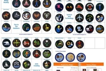 Guide Badges