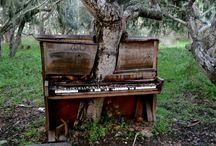 Natur/Musikk