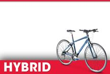 Hybrid Bikes / A look at the Trek and Electra Hybrid Bicycles.