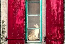 Dveře, okna