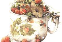 Mice and Rabbits
