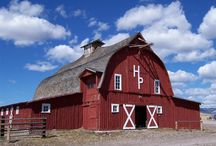 Barns / by Kyle Jensen