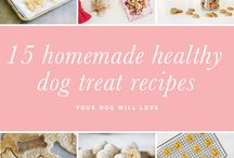 Healthy Treats / Healthy treat options for your pet.