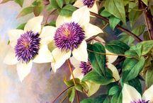 Botanical Canvas Art Prints / flower canvas art prints , plant canvas art print ,wall art ,wall decor ,framed art ,canvas art , giclee prints , home wall decor , wall art picture