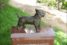 Toto, There's No Place Like Home / This is to memorialize Toto from The Wizard of Oz!