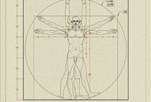 Vitruvian man decoded