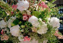 Flores / by Lizette Gtz.