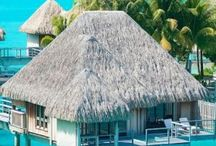 Paradise ❣
